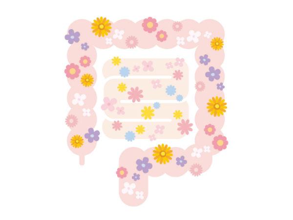 二子玉川のピラティス&小顔・美脚整体 | Hug&Smiley 腸内環境