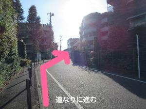 二子玉川のピラティス&小顔・美脚整体   Hug&Smiley 道順10